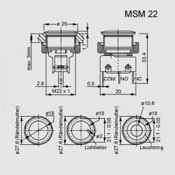 MSM 22