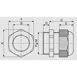 dimensions MBF
